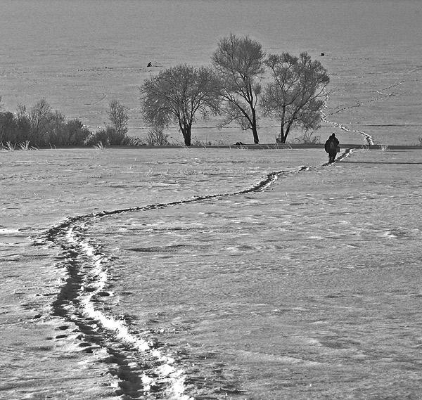"""фото """"тропинка"""" метки: пейзаж, зима"""