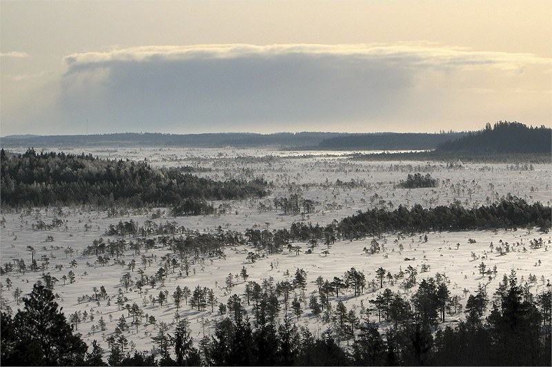 "photo ""Snow to come (over the swamp of Torro)"" tags: landscape, clouds, winter"