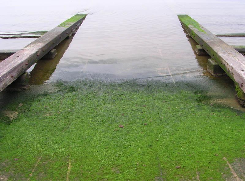 """фото """"Sliding"""" метки: пейзаж, абстракция, вода"""