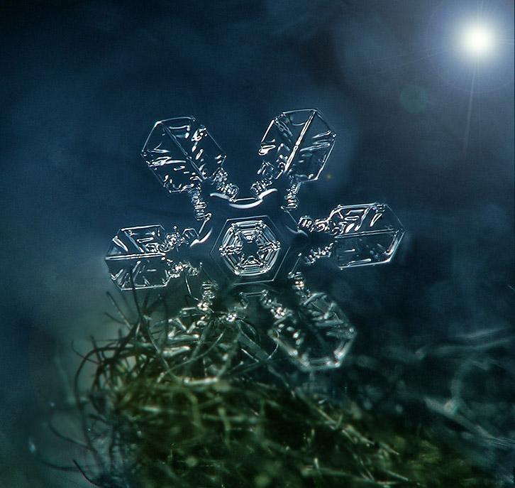 """фото """"Снежинка"""" метки: ,"""