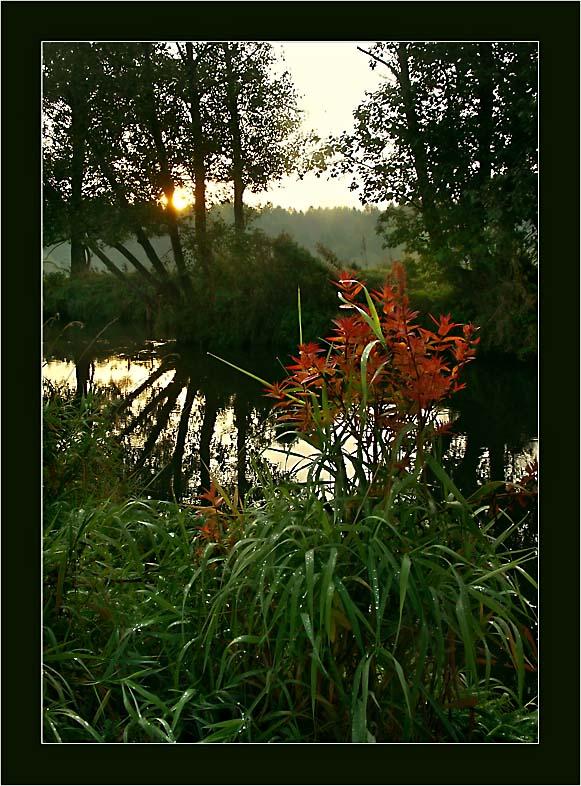 """фото """"Осенний поцелуй"""" метки: пейзаж, закат, осень"""