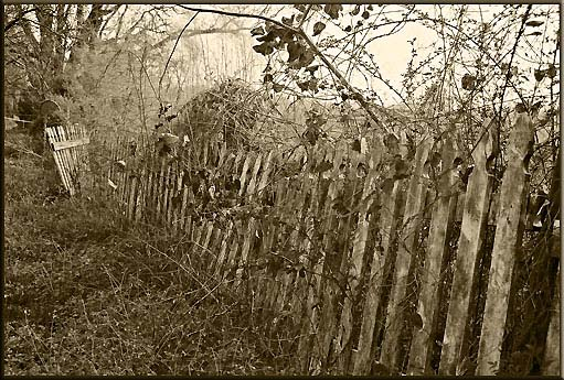"photo ""OLD FENCE: AIKINS FARM  MARCH  2006"" tags: landscape, still life, spring"