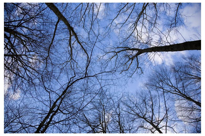 """photo """"Vertigo"""" tags: nature, landscape,"""