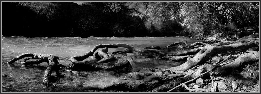 """фото """"В верховьях Иордана"""" метки: панорама, черно-белые,"""