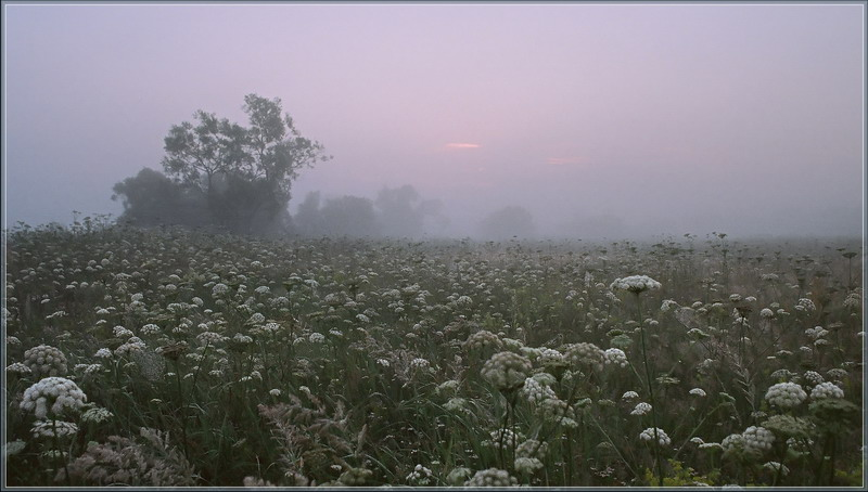 """фото """"на дальней станции сойду.."""" метки: пейзаж, закат"""