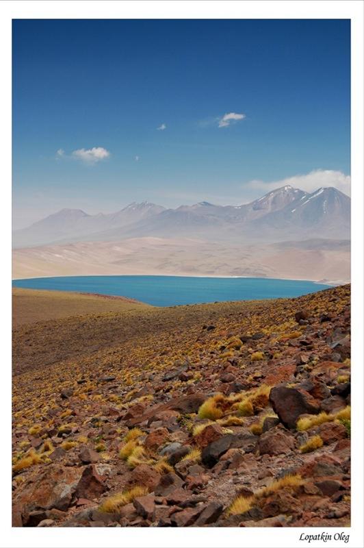 """фото """"Launa Miscanti, Chile"""" метки: пейзаж, путешествия, Южная Америка"""