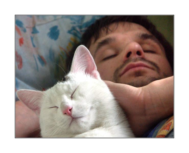 "фото ""Человек и кошка"" метки: жанр,"