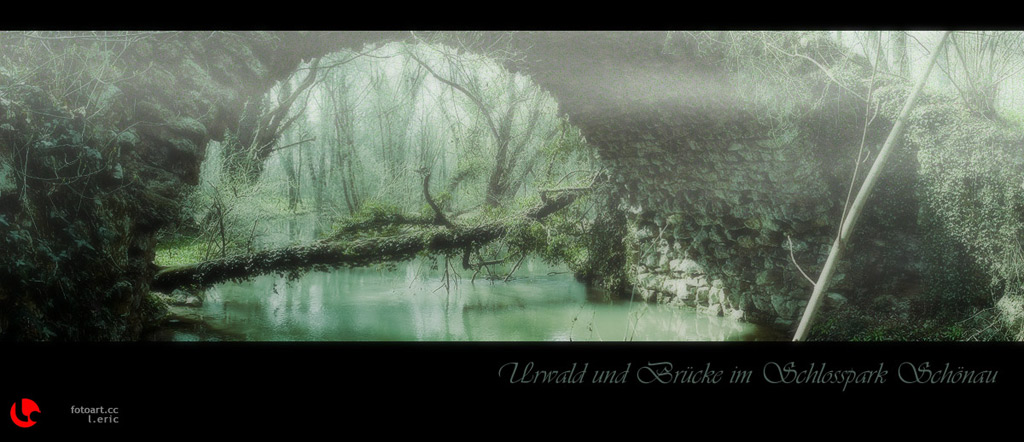 """photo """"mystic"""" tags: landscape, forest, water"""