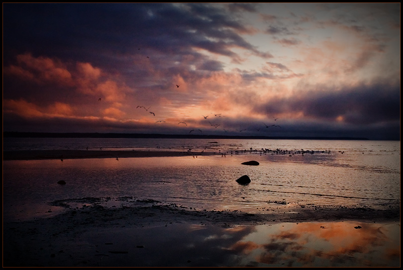 "фото ""Вперёд, к Весне..."" метки: пейзаж, закат, облака"