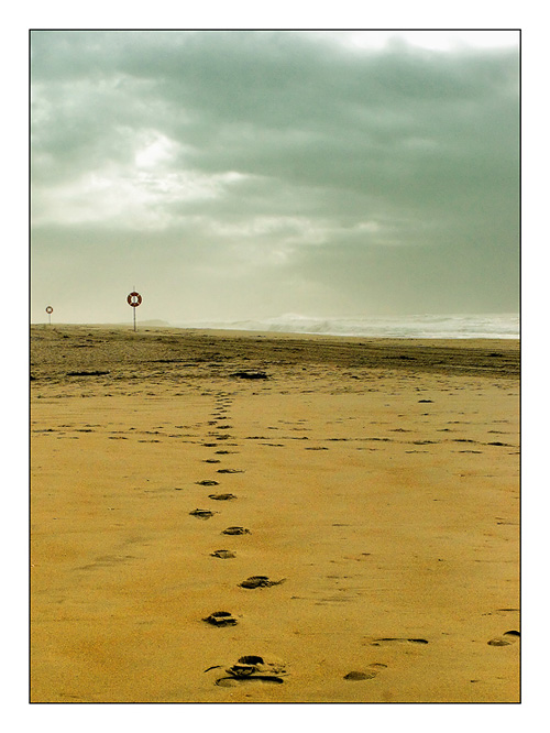 "photo ""Footsteps in the Sand"" tags: landscape, winter"