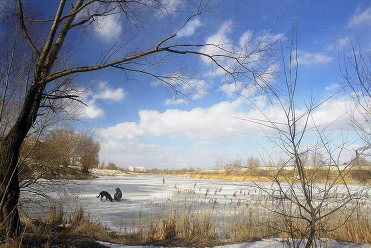 """фото """"Друзья"""" метки: пейзаж, зима"""