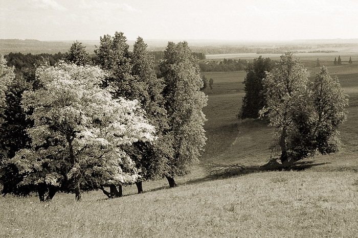 """photo """"Colors of autumn"""" tags: landscape,"""