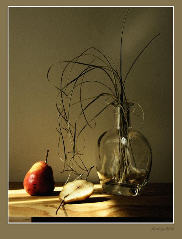 "photo ""##"" tags: still life,"