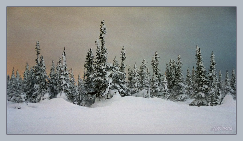 "photo ""Вьюга - Пурга"" tags: landscape, sunset, winter"