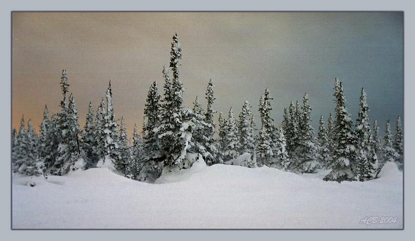 "photo ""Вьюга - Пурга"" tags: landscape, sunset, winter"