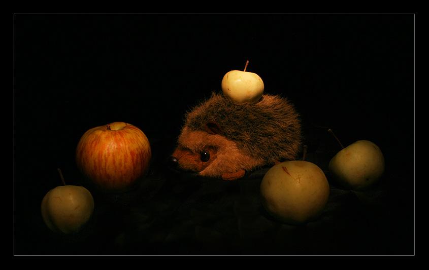 """фото """"Да не ем я этих яблок..."""" метки: природа, дикие животные"""