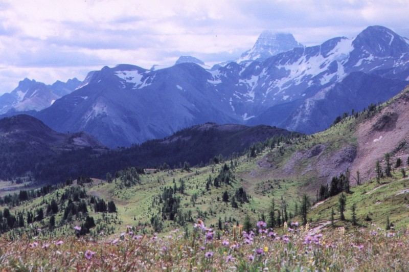 "photo ""Sunshine Meadows"" tags: landscape, mountains"