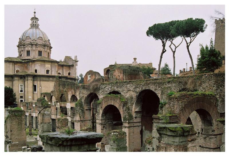 """photo """"Pini della via della Salara Vecchia"""" tags: architecture, travel, landscape, Europe"""