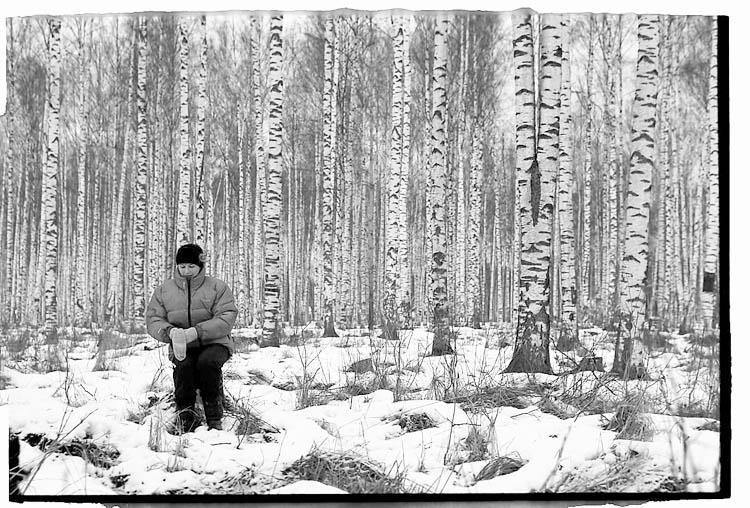 """фото """"Я в весеннем лесу, пил березовый сок..."""" метки: жанр,"""