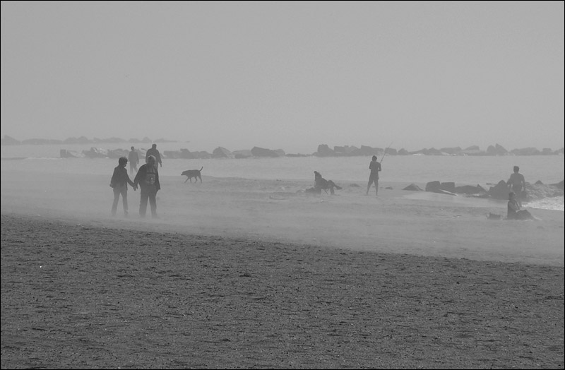 "photo ""Foggy Morning."" tags: black&white, misc.,"