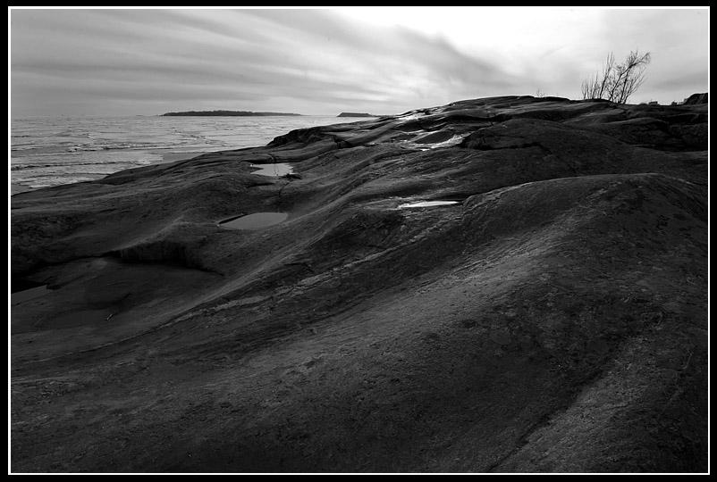 "photo ""Skin"" tags: landscape, black&white, spring"