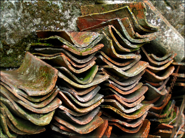 "photo ""Roof Tiles"" tags: landscape, architecture,"