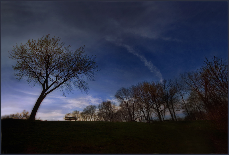 "photo ""Tree Silhouette"" tags: landscape, sunset"