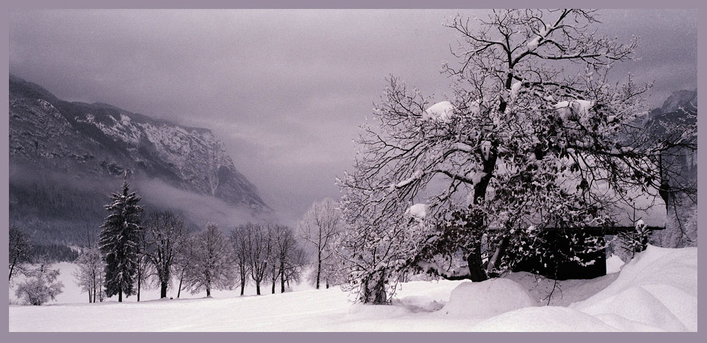 "photo ""Narnia"" tags: landscape, mountains, winter"