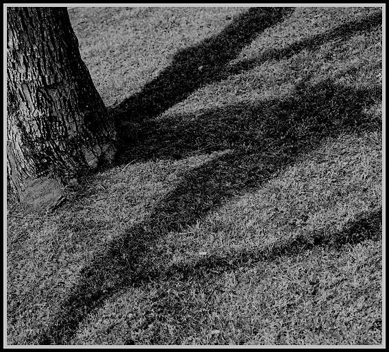 "photo ""Secret code."" tags: black&white, misc.,"