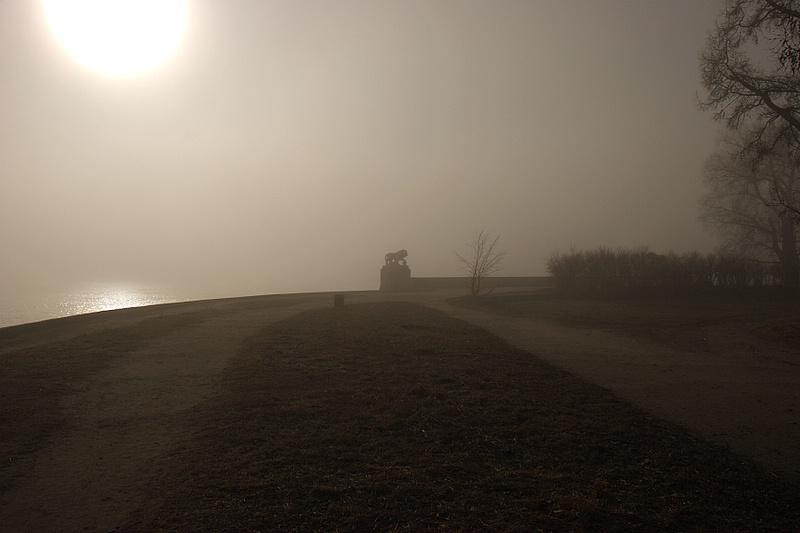 "фото ""Львенок в тумане"" метки: пейзаж,"