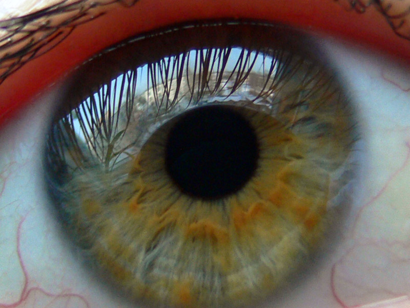 "photo ""Eye"" tags: macro and close-up, portrait, woman"
