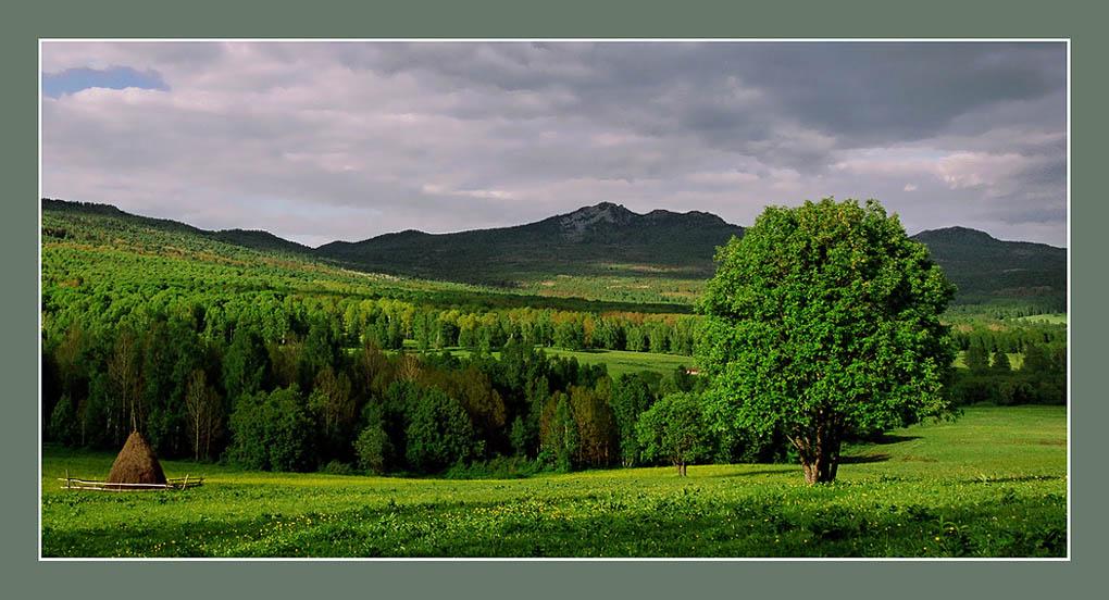 """фото """"Июнь"""" метки: пейзаж,"""