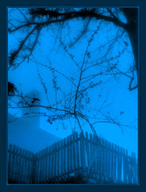 "photo ""Blue mist morning...dreams..."" tags: landscape,"