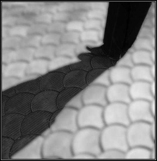 """photo """"shadows..."""" tags: genre,"""