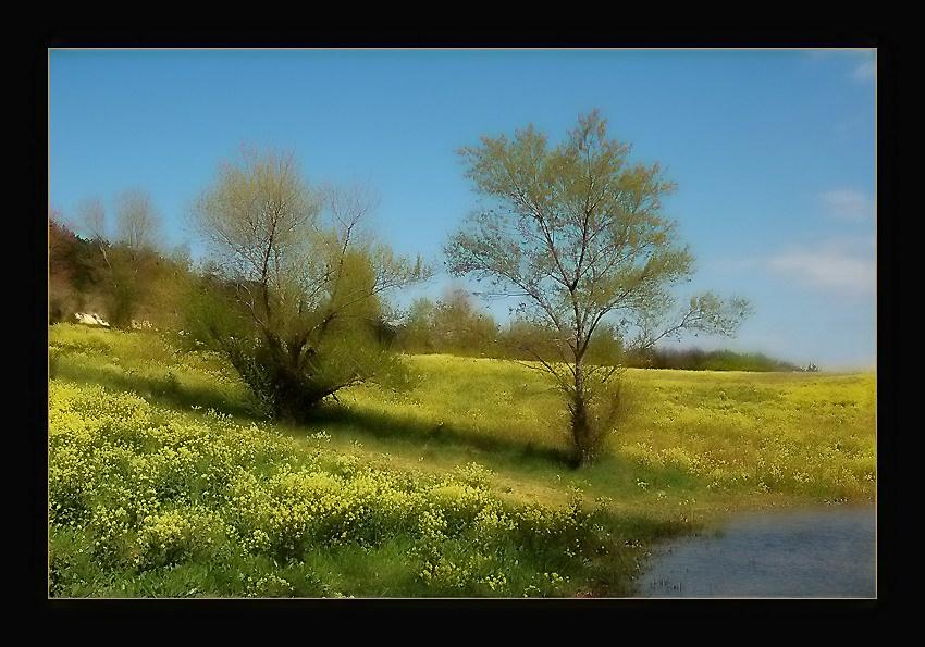 """photo """"Tableau du Printemps"""" tags: landscape, spring"""