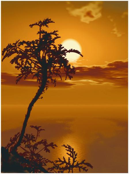 "фото ""Открытка"" метки: пейзаж, фотомонтаж, закат"