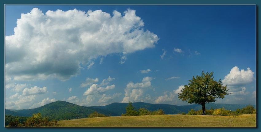 """фото """"этюд на высоте 2000м"""" метки: пейзаж, осень"""