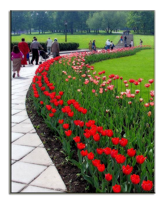 """фото """"Весенняя перспектива))"""" метки: пейзаж, весна"""