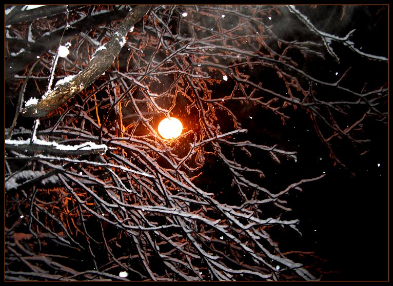 "photo ""***"" tags: landscape, night, winter"