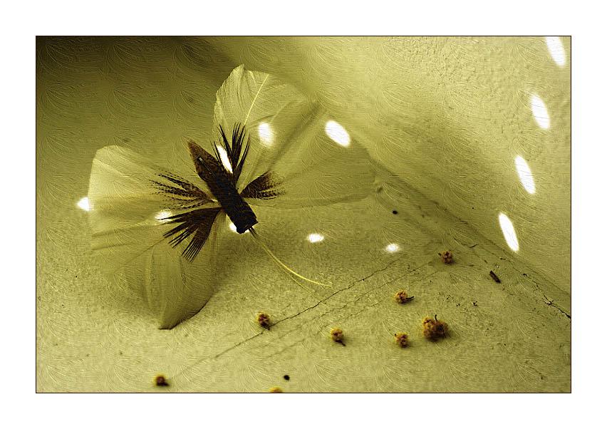"фото ""И снова бабочки..."" метки: макро и крупный план, натюрморт,"