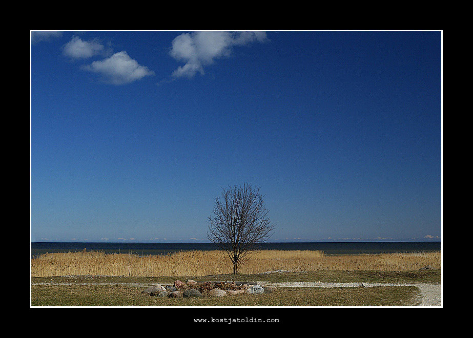 "photo ""Berzupe"" tags: landscape,"