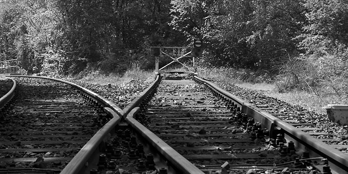 "photo ""End of the Road"" tags: still life, black&white,"
