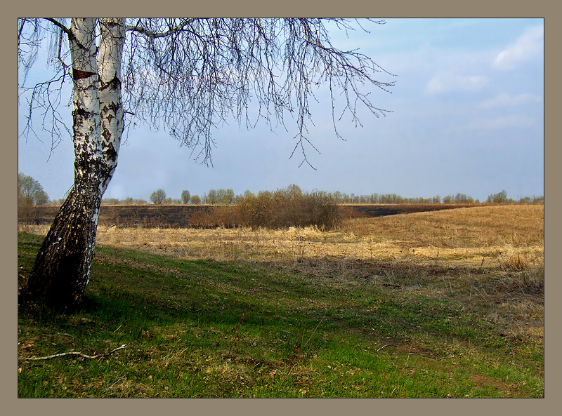 "photo ""***"" tags: landscape, spring"