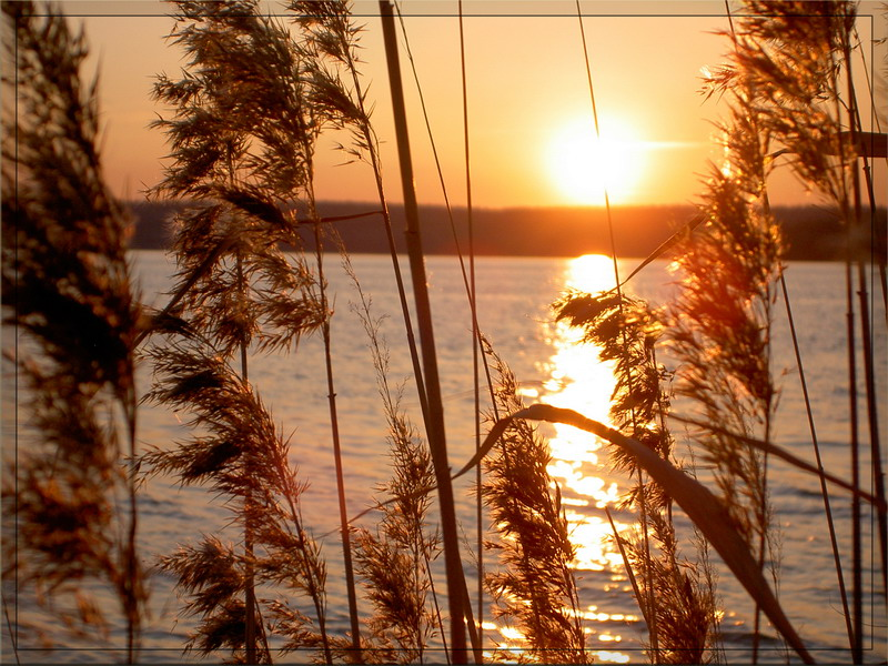 "фото ""Закаты."" метки: природа, пейзаж, закат"