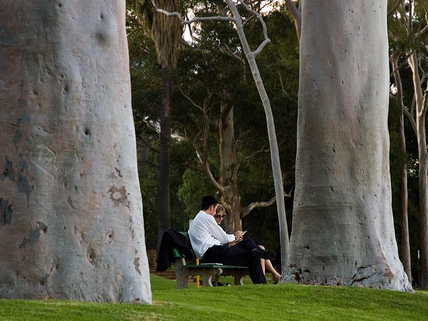 "фото ""Беседа"" метки: жанр, пейзаж, лес"