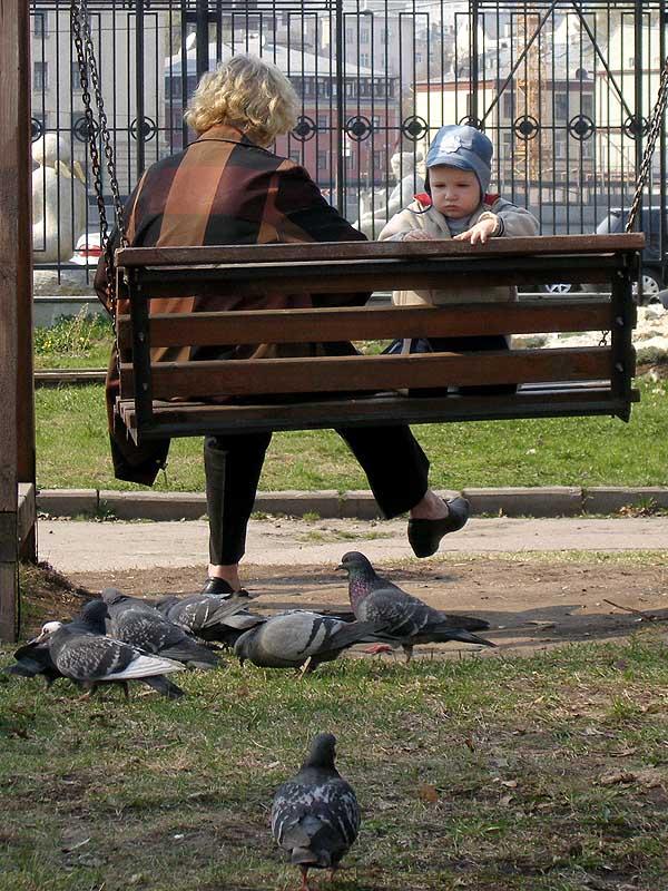 "фото ""О детстве и голубях"" метки: жанр,"