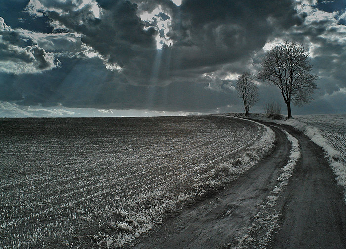 "photo ""ZX 11"" tags: landscape, winter"