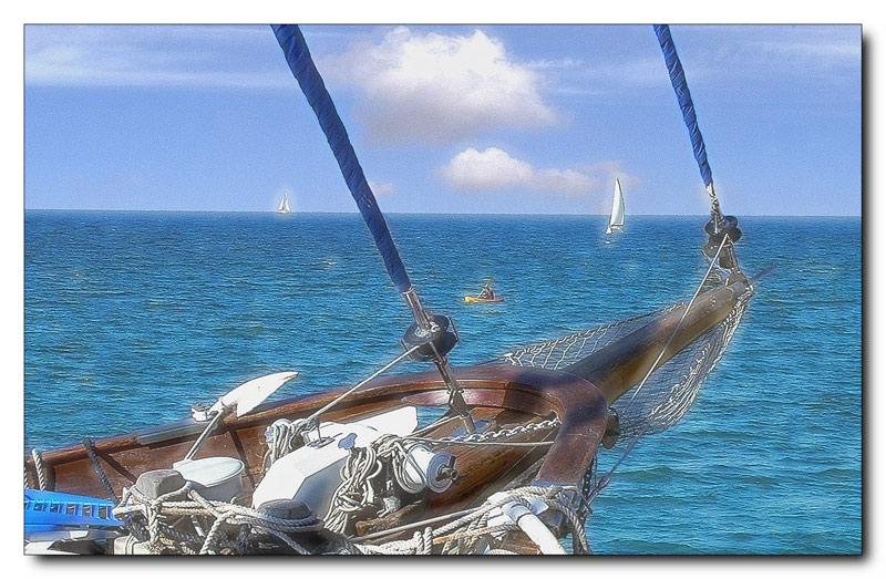 "photo ""Harmony of aquatics"" tags: landscape, sport, water"