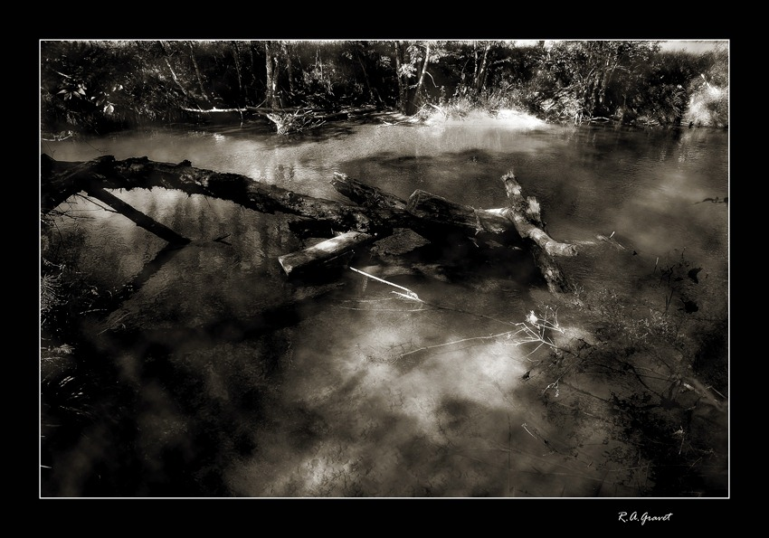 "photo ""Death dream in Black"" tags: landscape, nature, water"