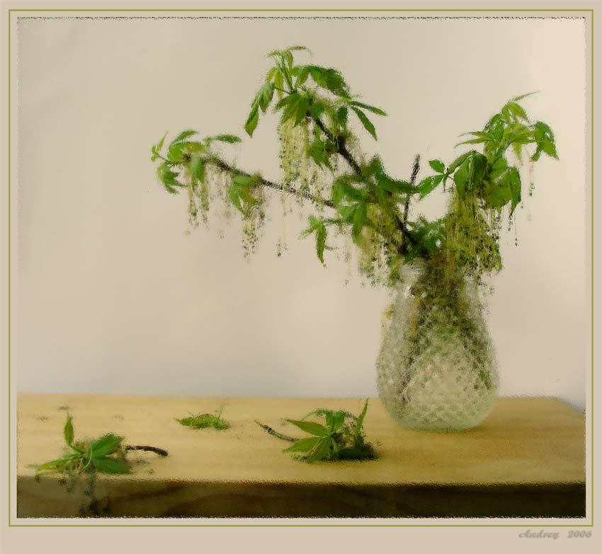 """photo """"Spring sketch"""" tags: still life,"""